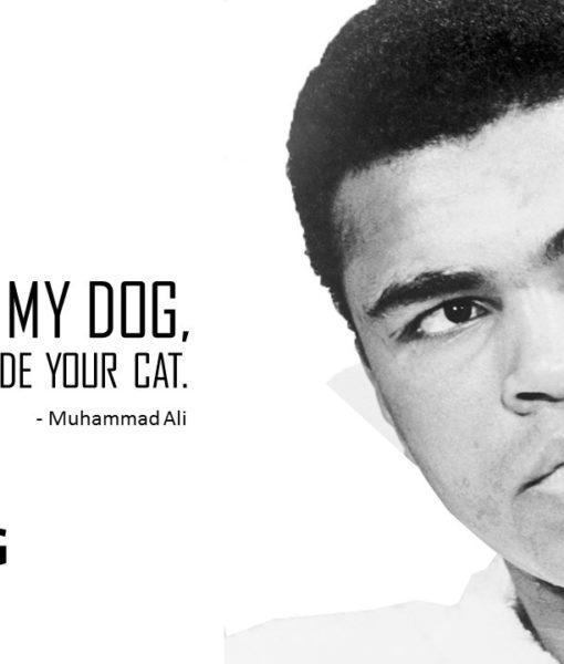 Muhammad Ali , Champion, Fighter, Slide, Powerpoint